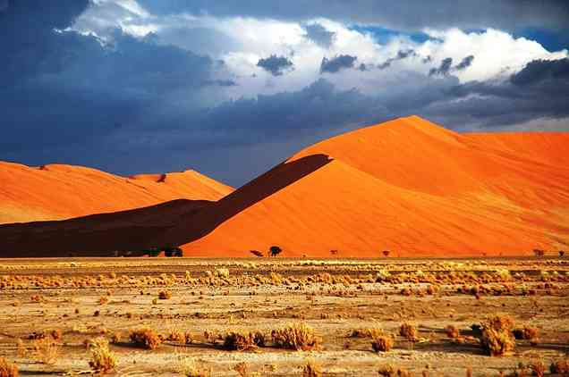 Listing - Best-of-Namibia